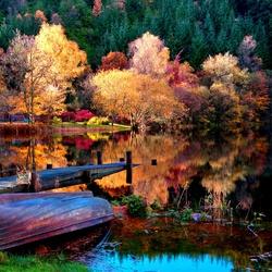Пазл онлайн: У озера