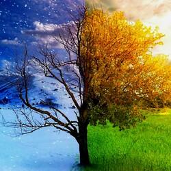 Пазл онлайн: Зима-весна