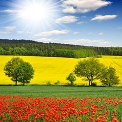 Пазл онлайн: Весенний пейзаж