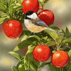 Пазл онлайн: Созрели яблоки