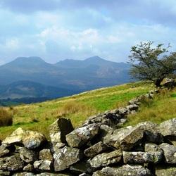 Пазл онлайн: Преграда из камней