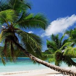Пазл онлайн: Отдых на Сейшелах