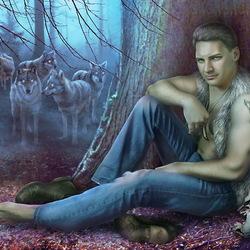Пазл онлайн: Одинокий волк