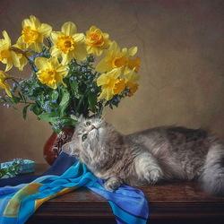 Пазл онлайн: Кошка Масяня и букет нарциссов