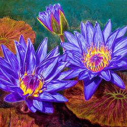 Пазл онлайн: Пурпурные водные лилии