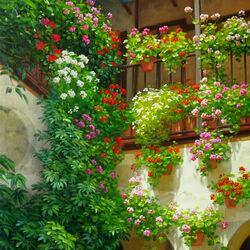 Пазл онлайн: Цветы на балконе