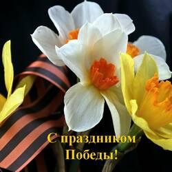 Пазл онлайн: Цветы  ветеранам