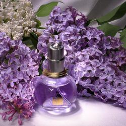 Пазл онлайн: Сиреневый аромат