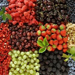 Пазл онлайн: Фрукты-ягоды