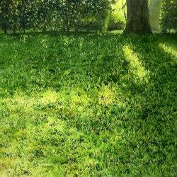 Пазл онлайн: Свет на траве