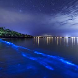 Пазл онлайн: Море звезд