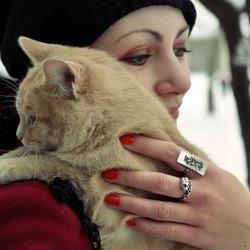 Пазл онлайн: Любимое существо