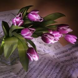 Пазл онлайн: Симфония весны