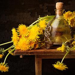 Пазл онлайн: Вино из одуванчиков