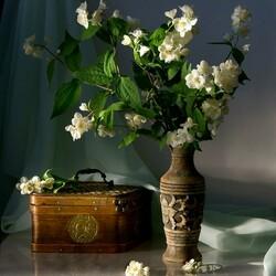 Пазл онлайн: Ветки жасмина