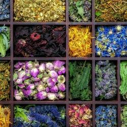 Пазл онлайн: Лоток с чаем