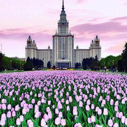 Пазл онлайн: Московский Государственный Университет им. Ломоносова