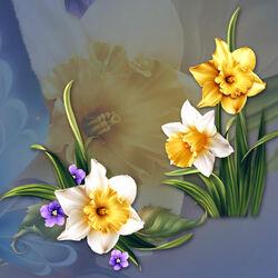 Пазл онлайн: Нарциссы