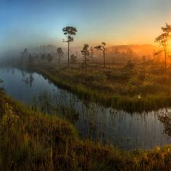 Пазл онлайн: Природа России