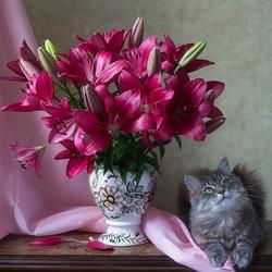 Пазл онлайн: Кошка Масяня и букет лилий