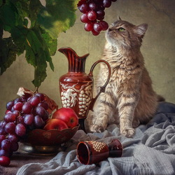 Пазл онлайн: Кошка Масяня и виноград