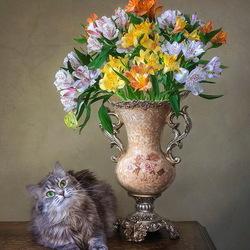 Пазл онлайн: Кошка Масяня и букет альстромерий