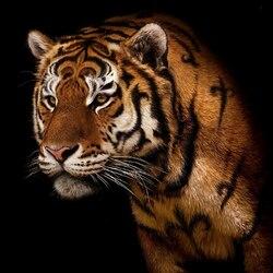 Пазл онлайн: Тигр, о тигр, светло горящий