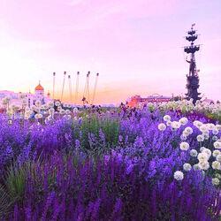 Пазл онлайн: Москва в лиловом