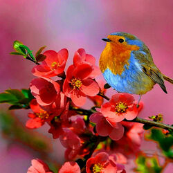 Пазл онлайн: На цветущей ветке