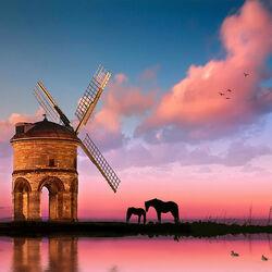 Пазл онлайн: Розовый вечер