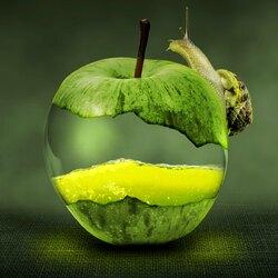 Пазл онлайн: Улитка на яблоке