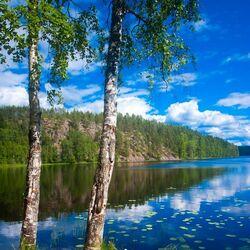 Пазл онлайн: Великолепие Природы
