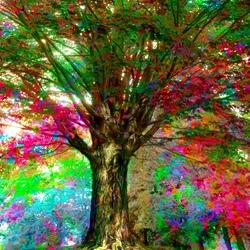 Пазл онлайн: Цветное дерево