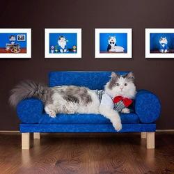 Пазл онлайн: Любимый диванчик
