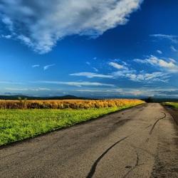 Пазл онлайн: Дорога между полей