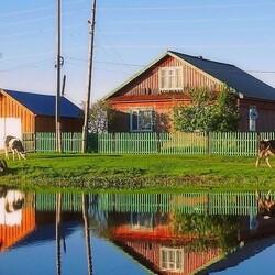 Пазл онлайн: Будни сибирского села