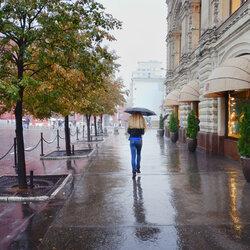 Пазл онлайн: Теплый дождь