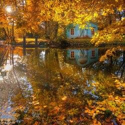 Пазл онлайн: Осенние краски Санкт-Петербурга