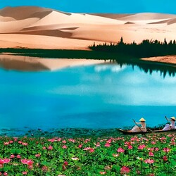Пазл онлайн: Озеро лотосов