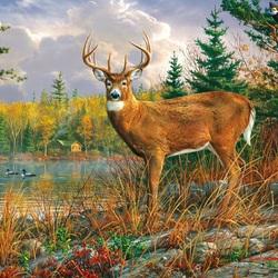 Пазл онлайн: Благородный олень