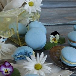 Пазл онлайн: Французские пирожные