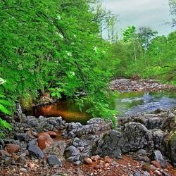 Пазл онлайн: Природный водоем