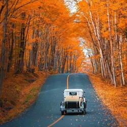 Пазл онлайн: Осень в стиле ретро