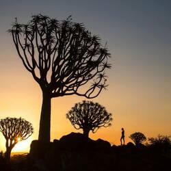 Пазл онлайн: Закат в пустыне