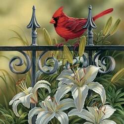 Пазл онлайн: Красная птичка