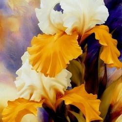 Пазл онлайн: Желто-белые ирисы