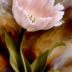 Пазл онлайн: Розовый тюльпан