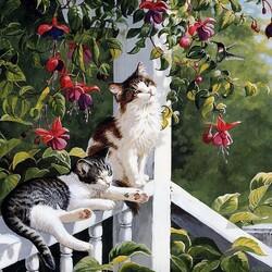 Пазл онлайн: Котики  и фуксия