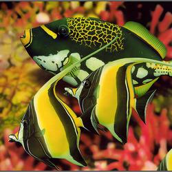 Пазл онлайн: Ну, здравствуй, новый аквариум!