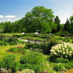 Пазл онлайн: Хендри парк, Гамильтон, Канада